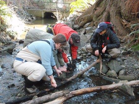 Streamkeepers at work in Campbell River