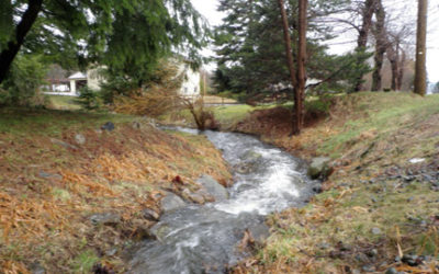 Parksville Streamkeepers course, Sept. 9-11